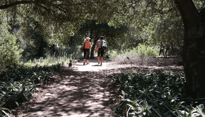 A Day at Rancho La Puerta